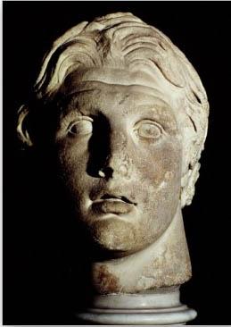 Alexander in Museum