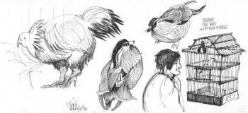 Bernie the Bird