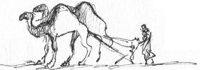 Camel Plow